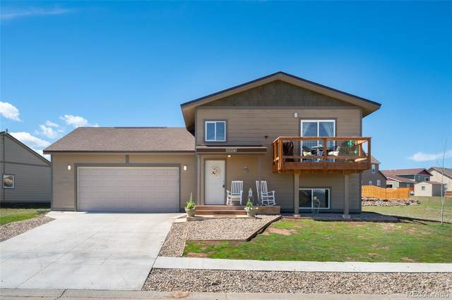 339 Lake View Road, Hayden, CO 81639 (MLS #4093294) :: 8z Real Estate