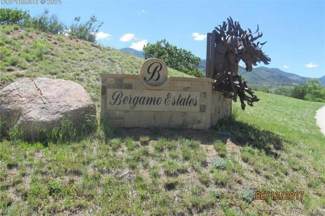 331 Bergamo Way, Colorado Springs, CO 80906 (#4125994) :: The Harling Team @ HomeSmart