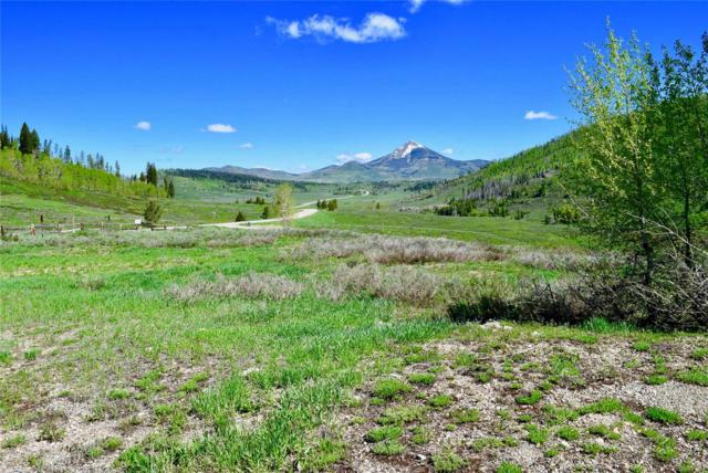 27215 Golden View Trail, Clark, CO 80428 (MLS #4129842) :: 8z Real Estate