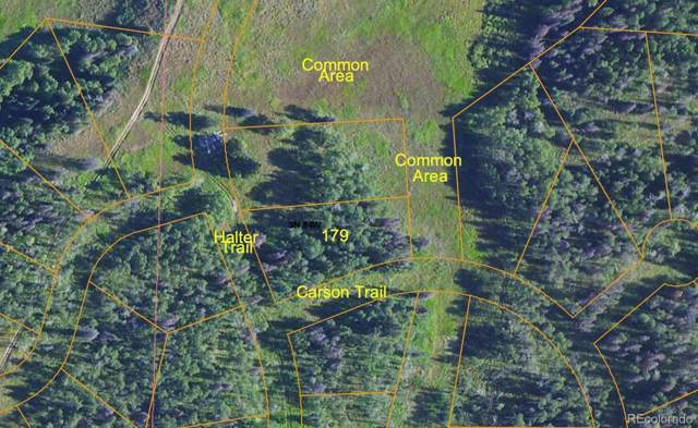 Halter Trail, Oak Creek, CO 80467 (#4137797) :: Bring Home Denver with Keller Williams Downtown Realty LLC