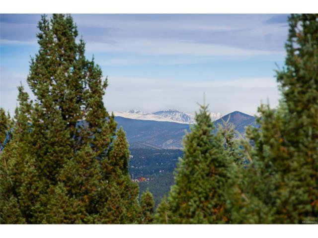 6008 Flat Creek Drive, Evergreen, CO 80439 (MLS #4141446) :: 8z Real Estate