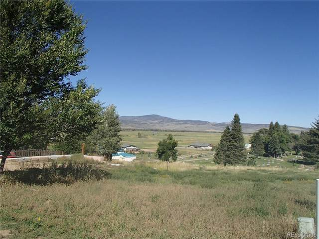 369 Vista Verde Drive, Hayden, CO 81639 (MLS #4176124) :: 8z Real Estate