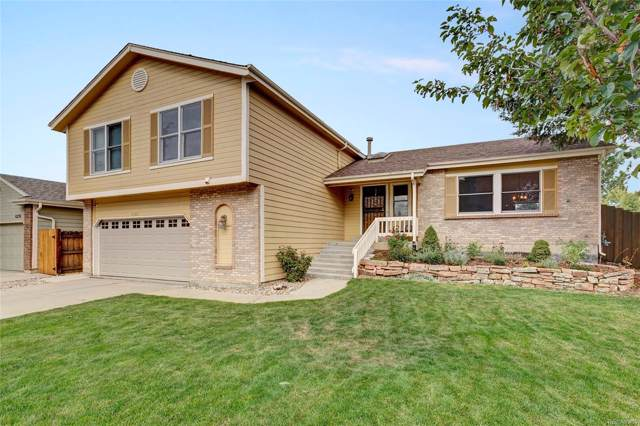 6386 S Pierson Street, Littleton, CO 80127 (MLS #4187428) :: 8z Real Estate