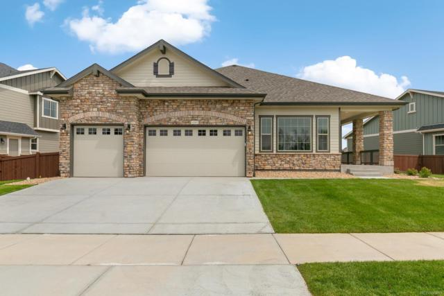 Address Not Published, , CO 80547 (MLS #4187846) :: 8z Real Estate