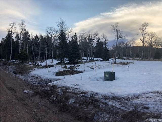 2921 Petito, Fort Garland, CO 81133 (MLS #4188919) :: 8z Real Estate