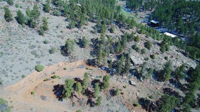 13535 Us Highway 285, Pine, CO 80470 (MLS #4196298) :: 8z Real Estate