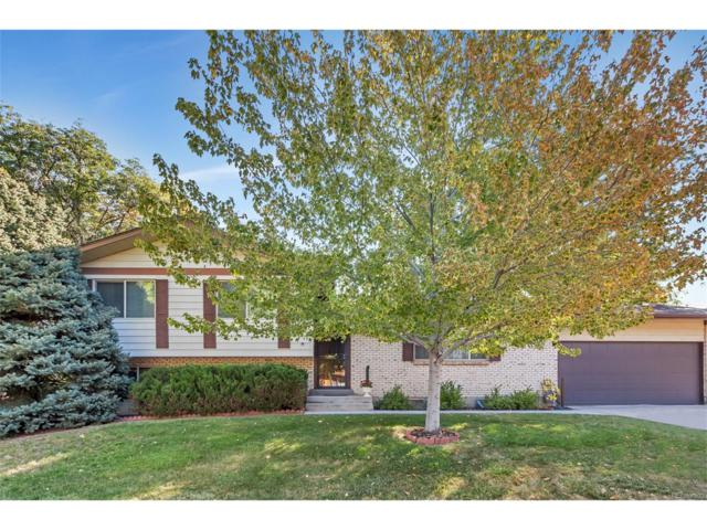 10506 Ura Lane, Northglenn, CO 80234 (#4200471) :: The Peak Properties Group