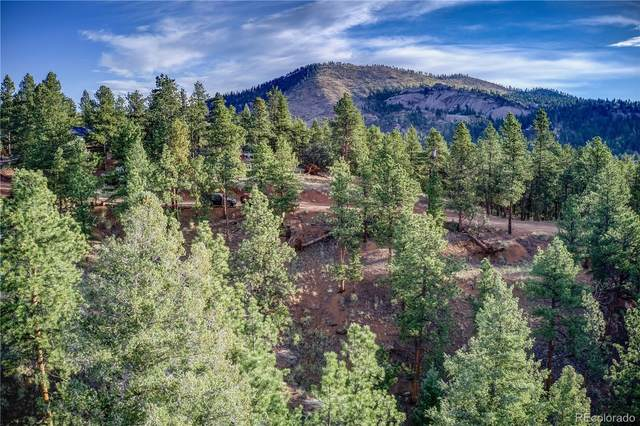 29542 High Road, Pine, CO 80470 (#4201070) :: The DeGrood Team
