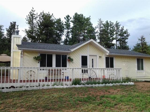 689 Gunsmoke Drive, Bailey, CO 80421 (MLS #4204113) :: 8z Real Estate