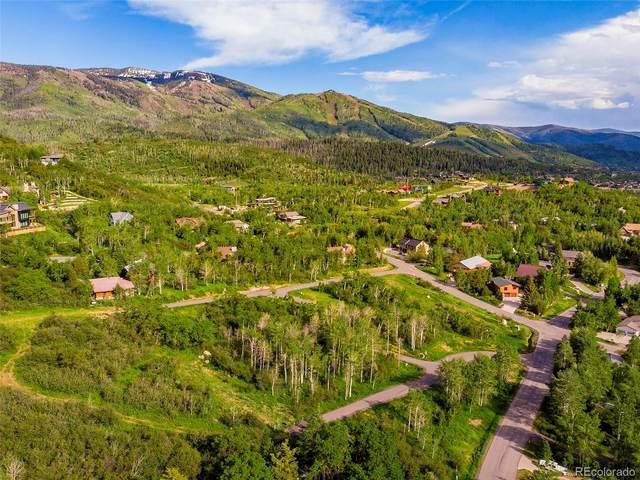0 Little Kit Lane Lane, Steamboat Springs, CO 80487 (MLS #4206725) :: 8z Real Estate