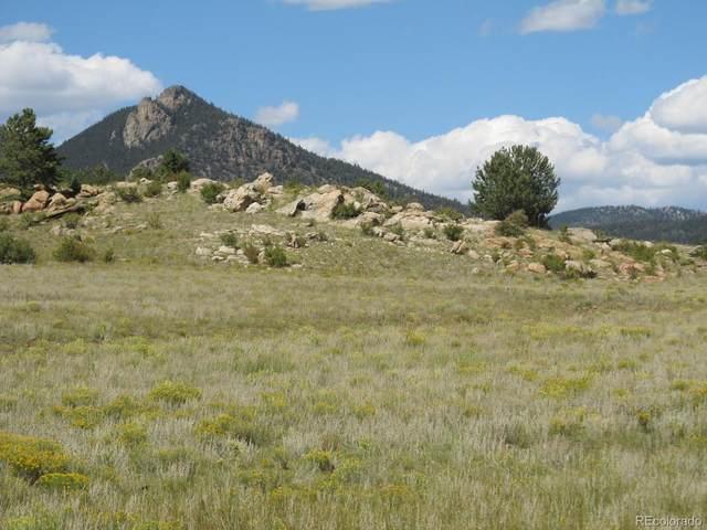2219 Montezuma Road, Hartsel, CO 80449 (#4207788) :: Symbio Denver