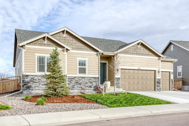 7515 Greenwater Circle, Castle Rock, CO 80108 (#4212895) :: The Griffith Home Team