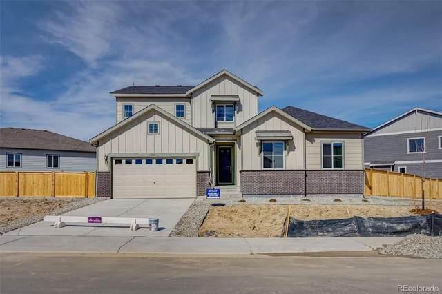 6545 Merrimack Drive, Castle Pines, CO 80108 (#4226296) :: The HomeSmiths Team - Keller Williams