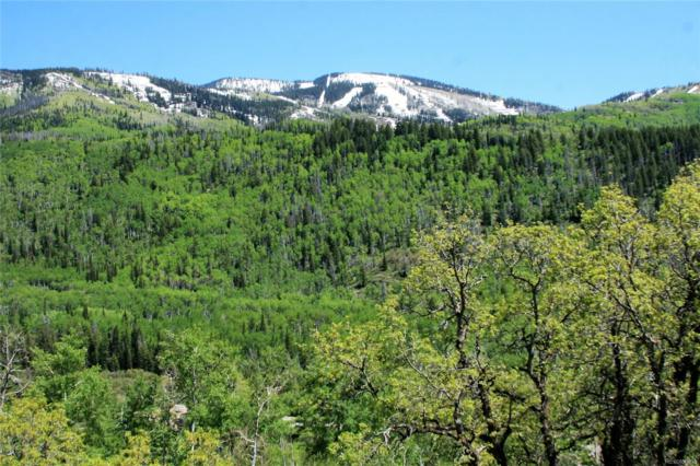 3064 Heavenly View, Steamboat Springs, CO 80487 (MLS #4269594) :: Bliss Realty Group