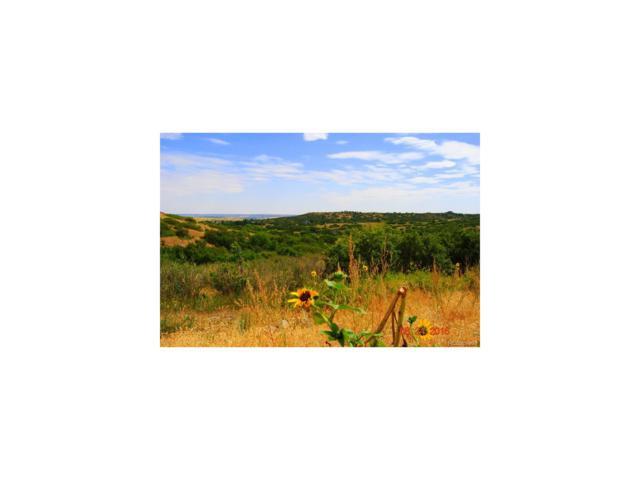 5665 Lemon Gulch Drive, Castle Rock, CO 80108 (MLS #4278561) :: 8z Real Estate