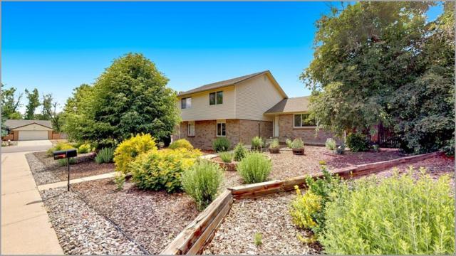 6215 S Benton Court, Littleton, CO 80123 (#4291512) :: The HomeSmiths Team - Keller Williams