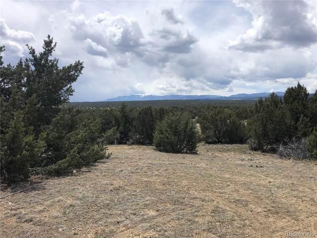 7667 Soda Creek Road, Pueblo, CO 81005 (#4303101) :: The DeGrood Team