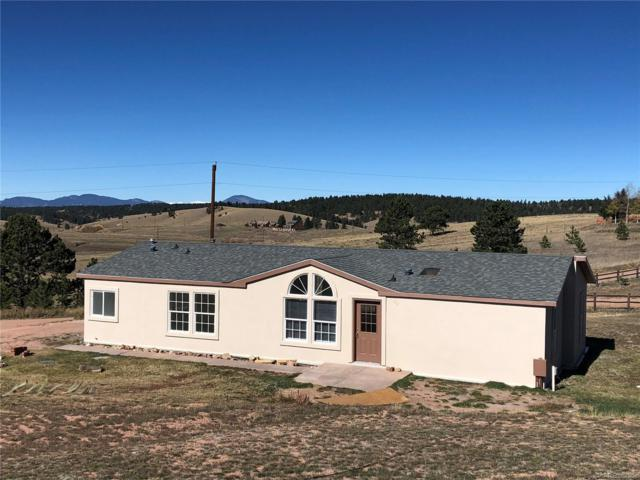 267 E Longbow Drive, Divide, CO 80814 (#4309984) :: Wisdom Real Estate