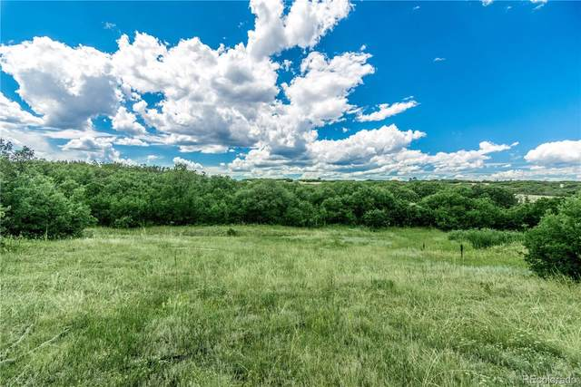 13097 Whisper Canyon Road, Castle Pines, CO 80108 (MLS #4325373) :: 8z Real Estate