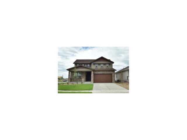 2038 Sicily Circle, Longmont, CO 80503 (MLS #4329491) :: 8z Real Estate