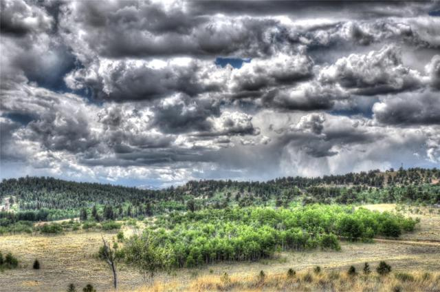 28 Loon Lane, Como, CO 80432 (#4360853) :: Structure CO Group