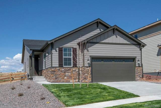 1674 Stable View Drive, Castle Pines, CO 80108 (#4361125) :: The DeGrood Team