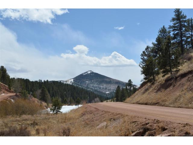 104 Pinewood Road, Florissant, CO 80816 (#4363849) :: 5281 Exclusive Homes Realty