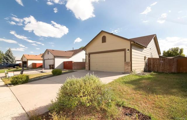 5181 Fennel Drive, Colorado Springs, CO 80911 (MLS #4371885) :: 8z Real Estate
