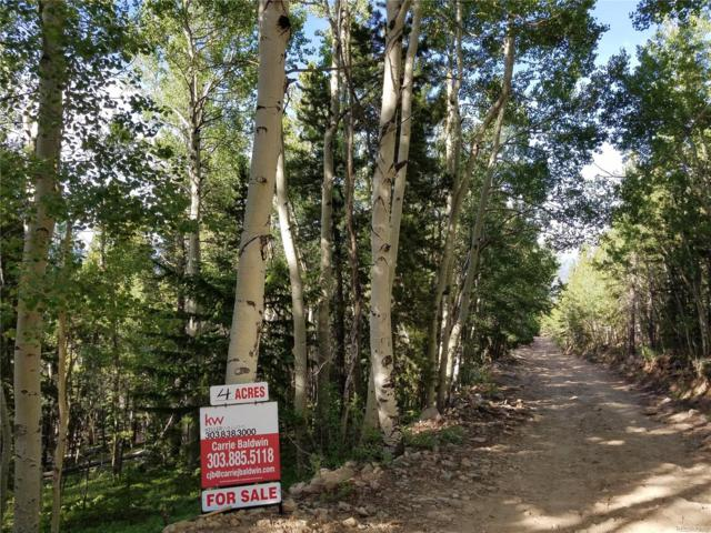 South Spring Gulch Road, Idaho Springs, CO 80452 (#4379429) :: 5281 Exclusive Homes Realty