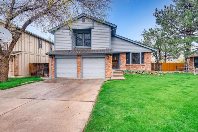 8164 Carr Circle, Arvada, CO 80005 (#4408290) :: Wisdom Real Estate