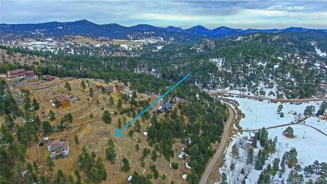 7384 Heiter Hill Drive, Evergreen, CO 80439 (#4409569) :: Wisdom Real Estate