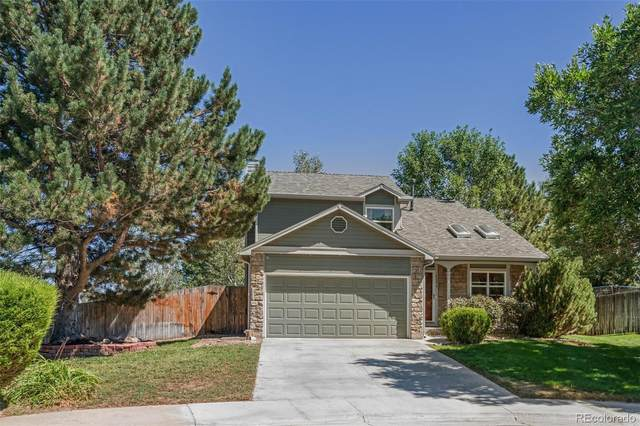 6080 S Tabor Street, Littleton, CO 80127 (#4410502) :: The DeGrood Team