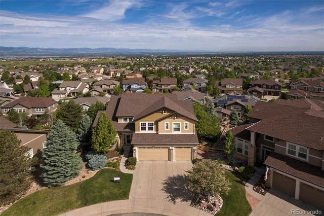 2963 Newbury Court, Highlands Ranch, CO 80126 (#4418702) :: The DeGrood Team