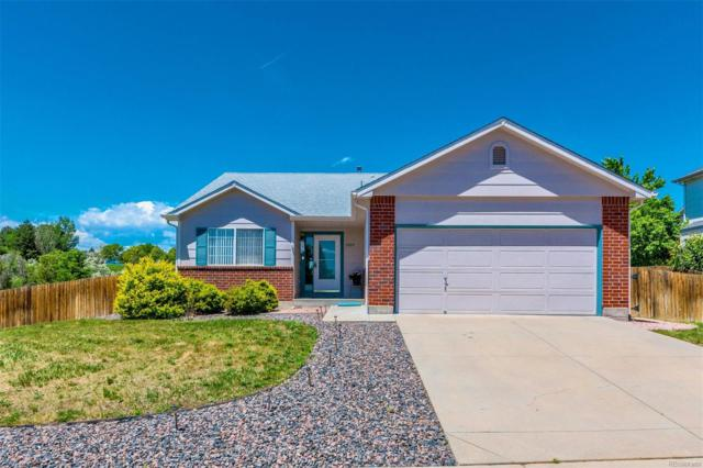 9509 Elizabeth Court, Thornton, CO 80229 (#4420077) :: The Galo Garrido Group