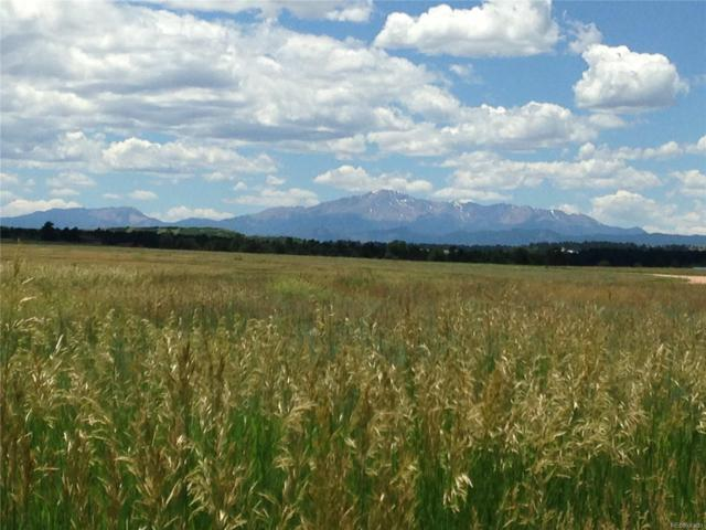 10375 Big Sky Trail, Elbert, CO 80106 (MLS #4427110) :: 8z Real Estate