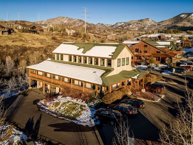 1205 Hilltop Parkway, Steamboat Springs, CO 80487 (#4427697) :: The HomeSmiths Team - Keller Williams