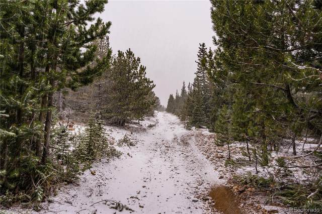 002 Mosquito Creek Road, Central City, CO 80422 (#4443219) :: The FI Team