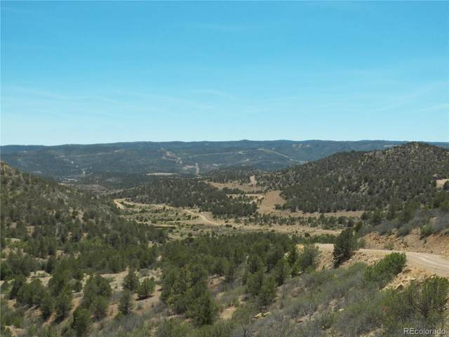 11967 County Road 43.6, Weston, CO 81091 (MLS #4443344) :: 8z Real Estate