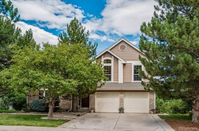 279 Clare Drive, Castle Pines, CO 80108 (MLS #4445649) :: Bliss Realty Group