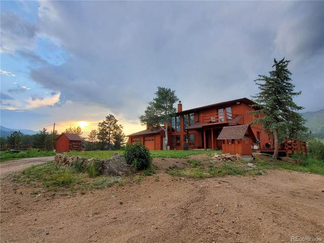 1919 Old Stagecoach Road, Bailey, CO 80421 (#4449298) :: Mile High Luxury Real Estate