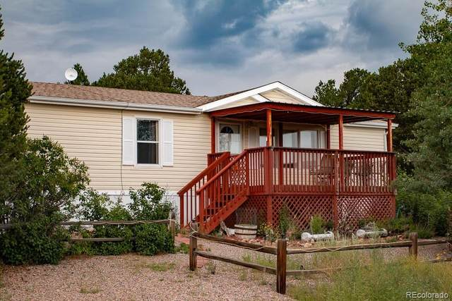 1639 20th Trail, Cotopaxi, CO 81223 (#4453688) :: The Artisan Group at Keller Williams Premier Realty