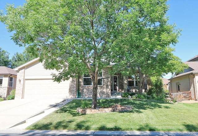8419 S Newcombe Street, Littleton, CO 80127 (#4462692) :: My Home Team