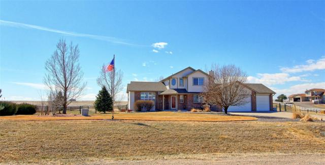 28610 E 160th Place, Brighton, CO 80603 (#4483363) :: The Peak Properties Group