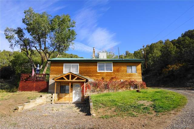1161 County Road 8, Meeker, CO 81641 (#4505183) :: The DeGrood Team