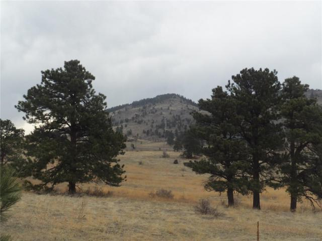 Snowy Ridge Road, Evergreen, CO 80439 (#4509702) :: Wisdom Real Estate