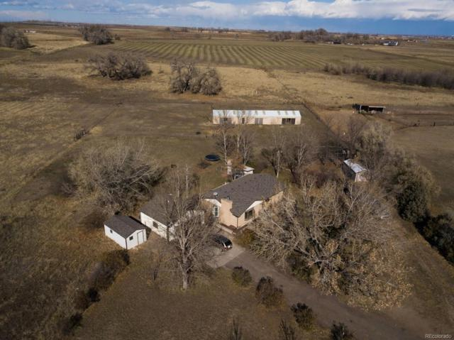 17609 County Road 14, Fort Lupton, CO 80621 (#4517107) :: The Heyl Group at Keller Williams