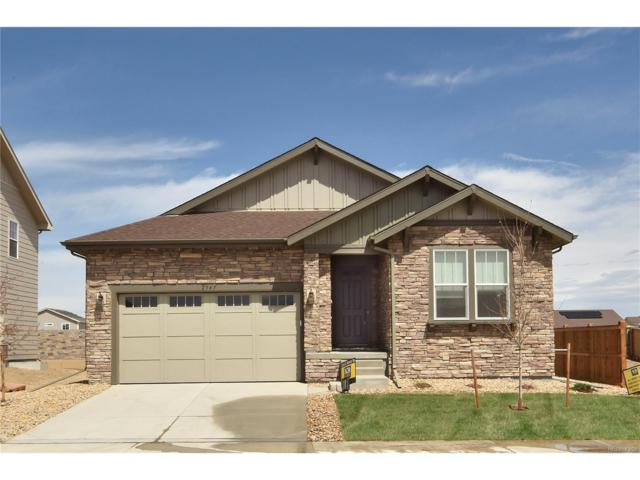 2545 E 159th Way, Thornton, CO 80602 (MLS #4518002) :: 8z Real Estate