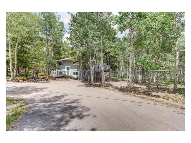 233 Deer Circle, Black Hawk, CO 80422 (MLS #4519835) :: 8z Real Estate
