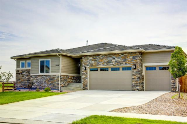 11498 Jasper Street, Commerce City, CO 80022 (#4536447) :: The City and Mountains Group