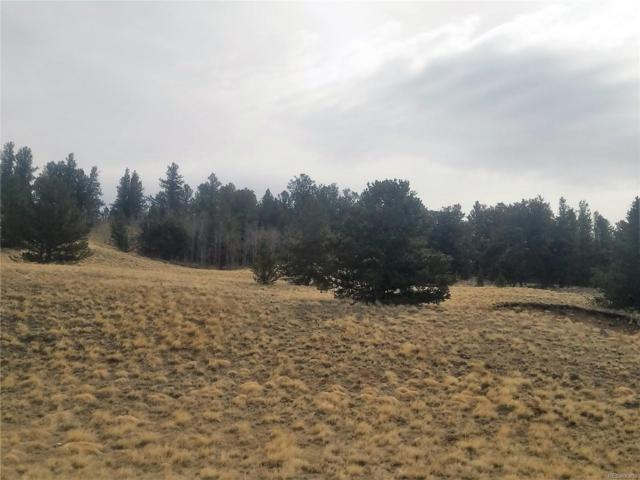 373 Abandoned Rail Road, Fairplay, CO 80440 (#4541311) :: Wisdom Real Estate